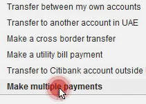 Making multiple payments